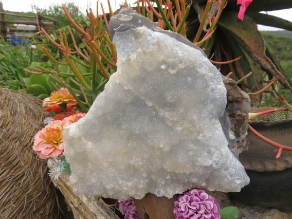 NATURAL CRYSTALLINE AGATE PIECES x 2 from Lesotho - TopRock