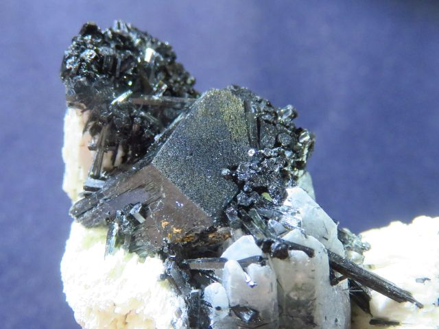 Black Schorl Tourmaline on quartz specimens x 5 from Namibia, Erongo - TopRock