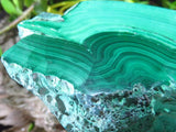 CUT AND POLISHED MALACHITE PIECE x 1 from Congo, Kasompe