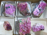 Natural Salrose Specimens x 6 from Congo, Kakanda - TopRock