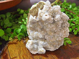 Natural Lesotho Druzy Mountain Quartz plates x 2 from Lesotho