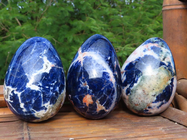 Polished Medium to Large sized Sodalite Eggs x 6 from Namibia