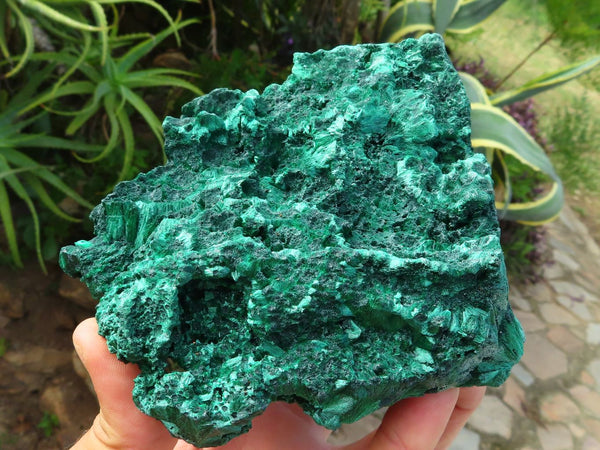 Natural Large Fibrous Silky Malachite specimen x 1  from Kasompe, Congo