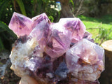 Natural Dark Spirit Amethyst Quartz Clusters x 3 from Kwandebele, South Africa