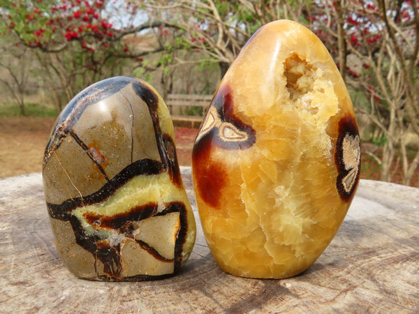Polished Septerye Standing Display Free Forms (1 with Crystalline Vug) x 2 from Madagascar