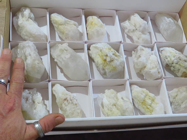 Natural Intact Pineapple Quartz Crystals x 15 from Madagascar