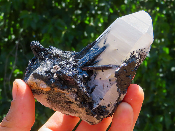 Natural Medium Froijite Black Tourmaline In Quartz & Feldspar Specimens x 6 from Erongo, Namibia
