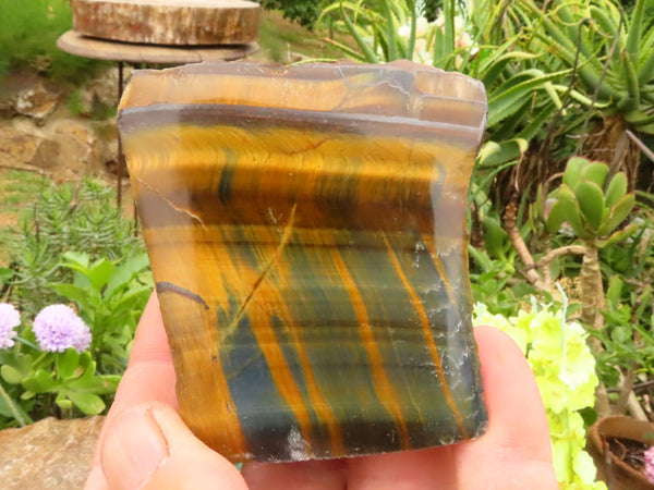 Polished One Side Small to Medium Tigers Eye Slabs x 12 from Prieska, South Africa