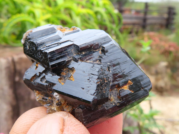 Natural Small Black Tourmaline Crystals x 64 from Erongo, Namibia