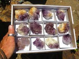 Natural Dark Spirit Amethyst Quartz Clusters x 12 from Kwandebele, South Africa