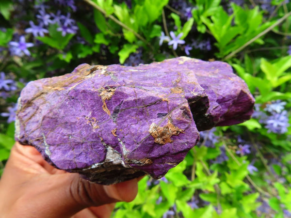 Natural Purple Purpurite Specimens x 5 From Namibia