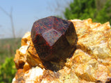 Natural Pyrope Garnet on Quartz Matrix Specimens x 3 from Madagascar