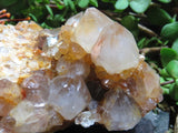 Natural spirit Quartz Clusters x 6 from Kwandebele, South Africa