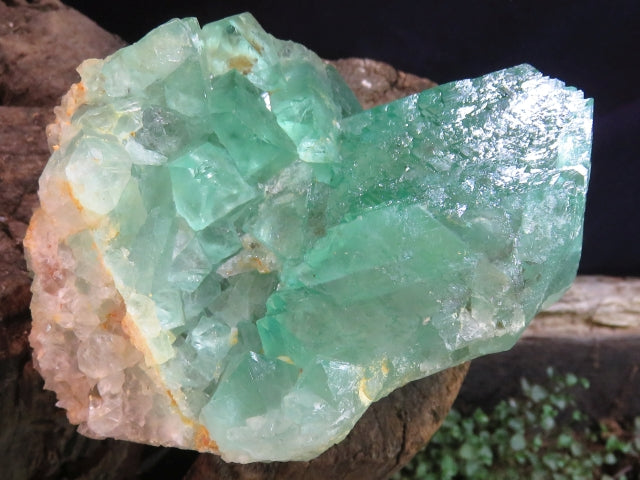 Natural Stunning Green Octahedron Fluorite specimen x 1  from Northern Cape, South Africa