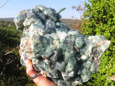 Natural XXL Cubic Green Fluorite Specimen x 1  from Madagascar