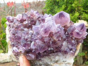 Natural Dark Amethyst Spirit Quartz Cluster x 1  from Kwandebele, South Africa