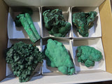 Natural Botryoidal Crystalline Malachite Specimens x 6 from Kasompe, Congo