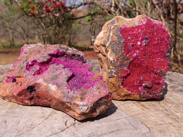 Natural Deep Pink Large Salrose / Cobaltion Dolomite Specimens x 2 from Kakanda, Congo