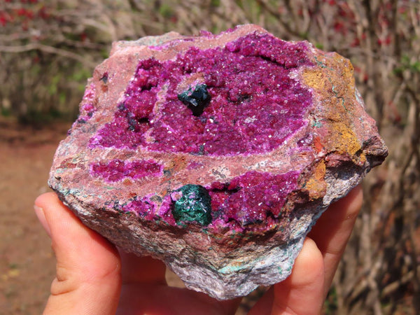 Natural Pink Gemmy Cobaltion Dolomite / Salrose Crystalline Specimens with some Malachite x 2 from Kakanda, Congo