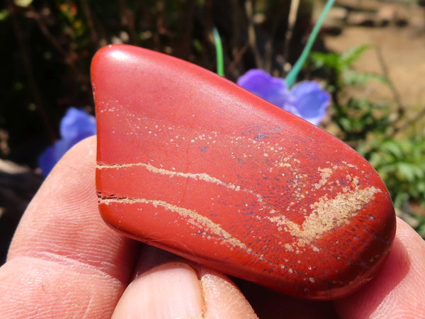 Polished Small Red Jasper Tumbled & Finished By Hand x 24 from Northern Cape, South Africa