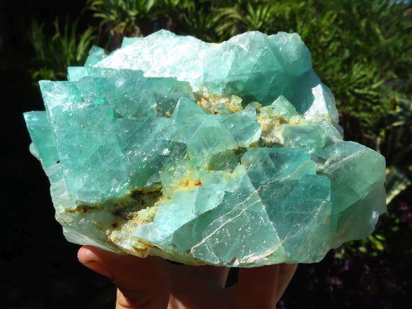 Natural Exceptional Rare Emerald Fluorite Octahedron Specimen x 1  from Riemvasmaak, South Africa