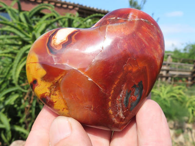 Polished Carnelian Hearts x 12 from Madagascar