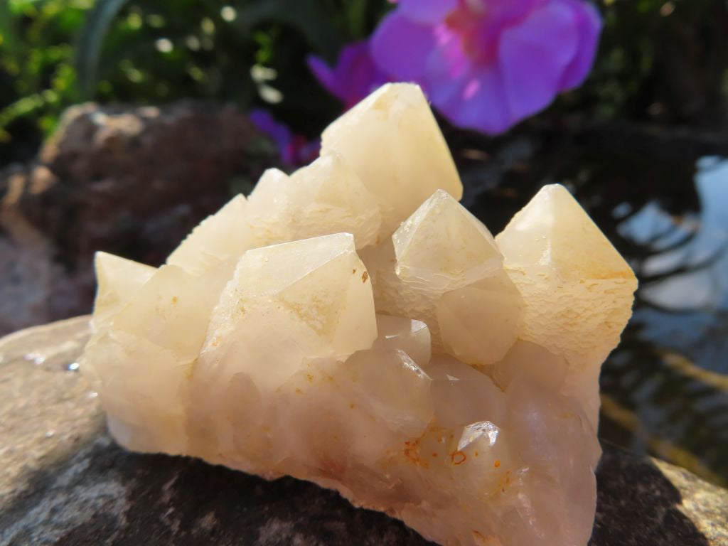 Natural B Grade Mixed Quartz Crystals x 12 from Southern Africa