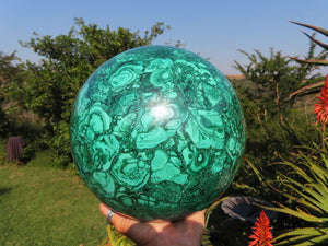 Polished Flower Malachite Sphere x 1 from Congo