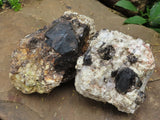 Natural Large Pyrope Garnet in Matrix Specimens x 2 from Madagascar