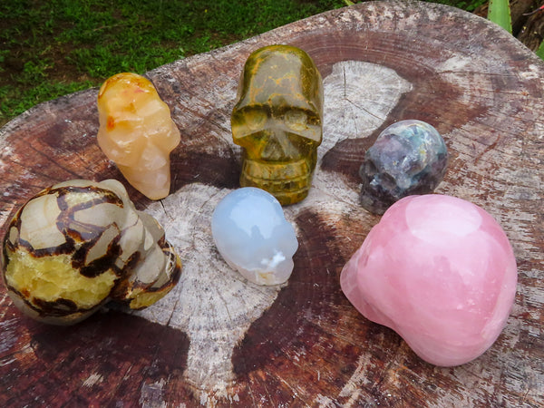Polished Small to Medium Mixed Sculpted Skulls x 6 from Madagascar