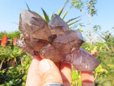 Natural Smokey Amethyst Quartz Crystals x 4 from New Schwaben, Namibia