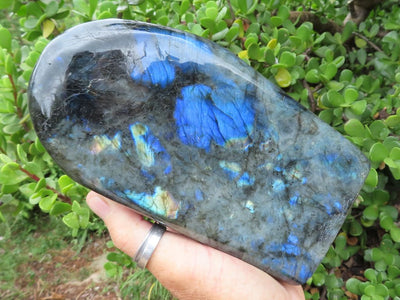 Polished Large Labradorite Standing Freeform x 1 from Tulear, Madagascar