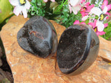 Polished Septeyre Sauvage Dragons Eggs x 6 from Mahaganja, Madagascar