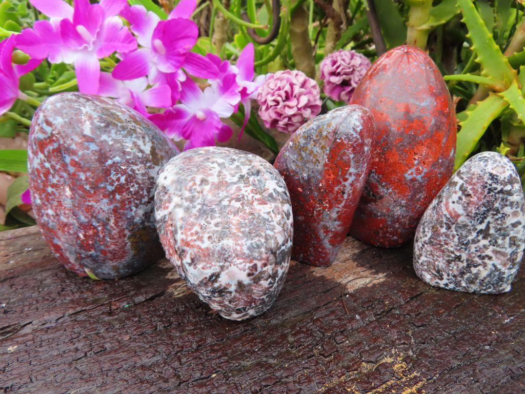 Polished Flower Jasper Standing Free Forms x 5 from Namibia