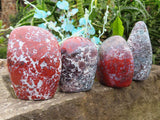 Polished Flower Jasper Standing Free Forms x 4 from Namibia