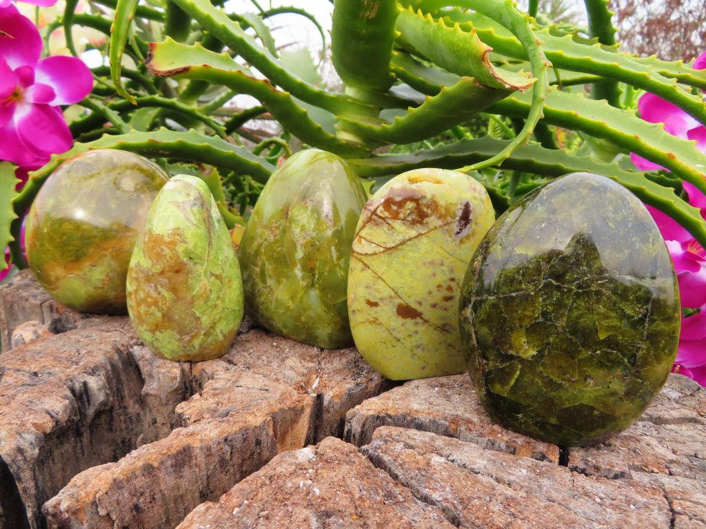 Polished Green Opal Standing Free Forms x 5 from Madagascar