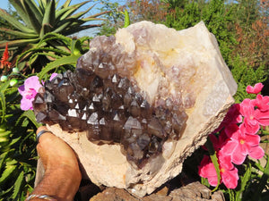 Natural Cascading Smokey Amethyst Quartz Crystal Cluster x 1 from New Schwaben, Namibia