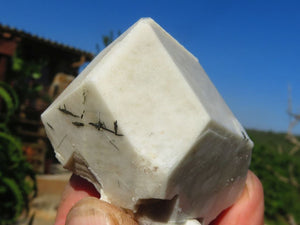 Natural Aegerine & Orthoclase Crystals x 12 from Zomba, Malawi