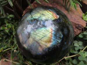 Polished Large Labradorite Sphere x 1 from Madagascar