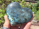 Polished Labradorite Hearts x 6 from Tulear, Madagascar