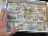 Natural Spirit Quartz Clusters x 12 from Kwandebele, South Africa - TopRock