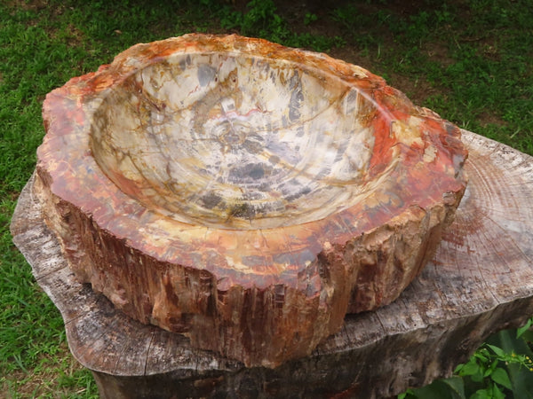 Polished XXL Petrified Wood Fossil Bowl With Natural Husk x 1 from Mahaganja, Madagascar