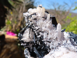 Natural Froijite Black Tourmaline With Quartz Crystals x 3