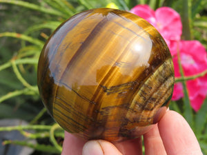 Polished Tigers Eye Ball x 1 from Prieska, South Africa