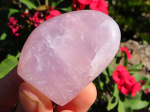 Polished Rose Quartz Crystal Free Forms x 12 from Malawi