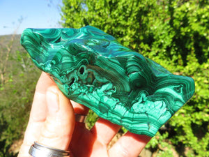 Polished Malachite Freeforms x 6 from Congo