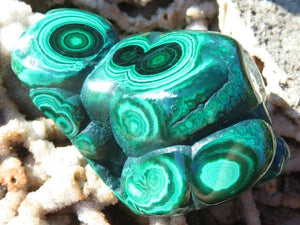Polished Malachite Freeforms x 6 from Kolwezi, Congo