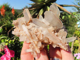 Natural Mixed Quartz Crystal Clusters x 12 from Madagascar
