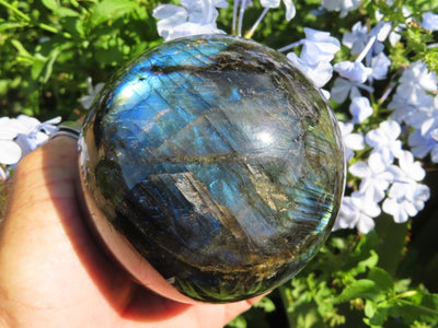 Polished Labradorite Sphere x 1 from Madagascar