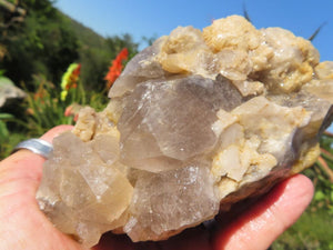 Natural Rutile & Clear Quartz Crystal Clusters x 2 from Erwe, Namibia